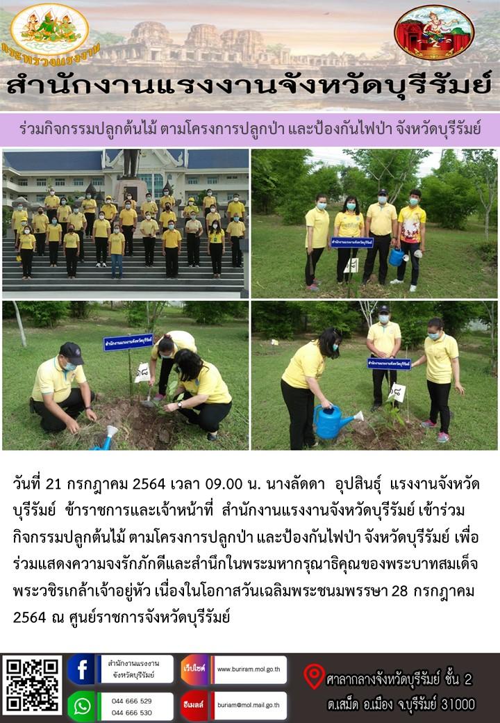 สำนักงานแรงงานจังหวัดบุรีรัมย์ ร่วมกิจกรรมปลูกต้นไม้ ตามโครงการปลูกป่า และป้องกันไฟป่า จังหวัดบุรีรัมย์
